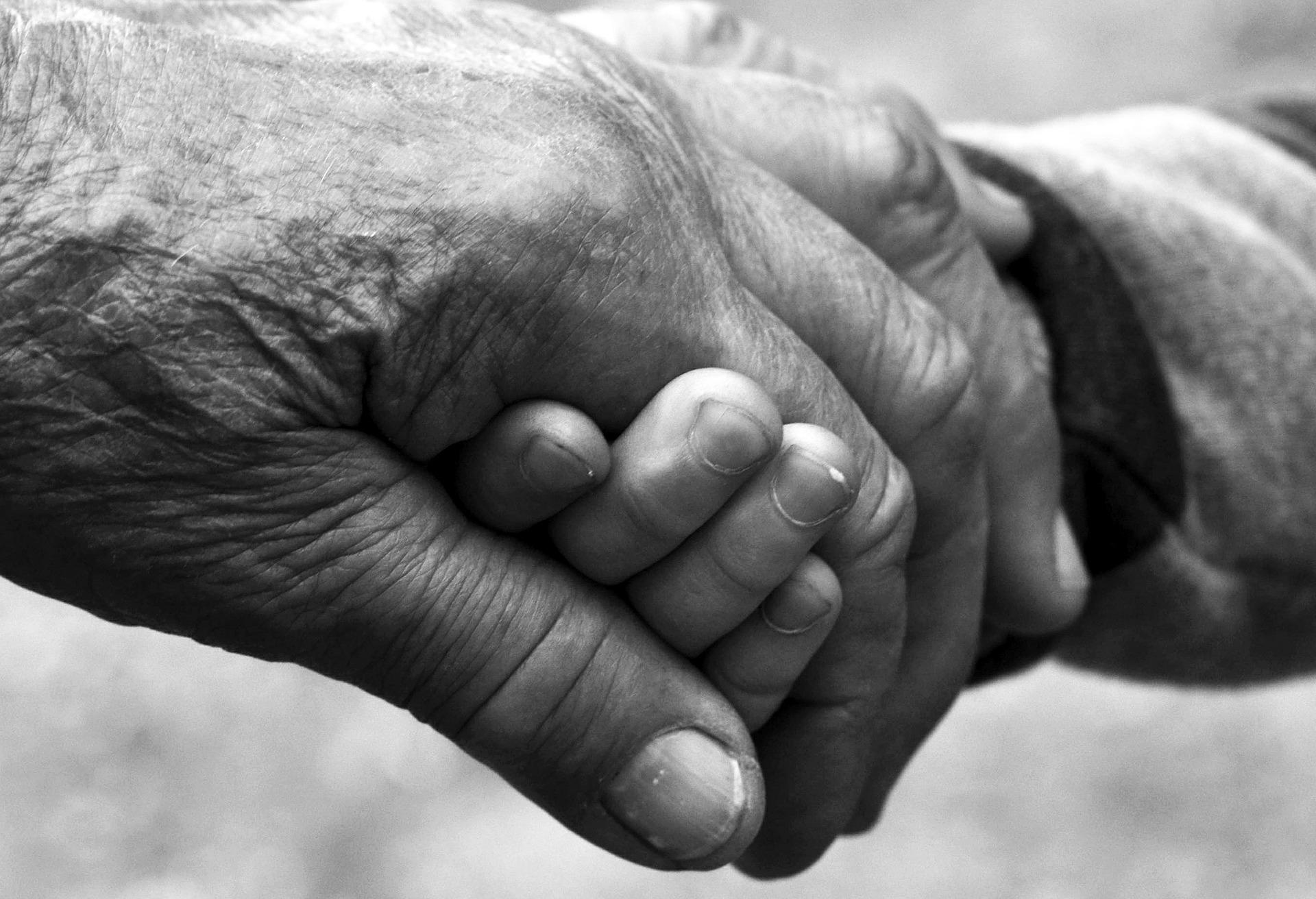 ¿Qué es la artrosis? | Clínica fisioterapia Miguel Peña